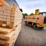 timber-843063_1280